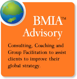 BMIA™ Advisory - Consulting, Executive Coaching & Group Facilitation
